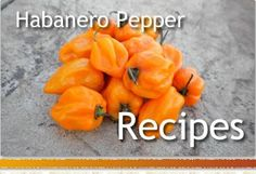 Habanero Recipes- for the ridiculous amount of peppers my garden produced this year!