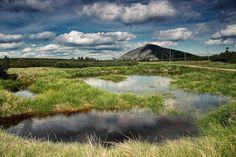 Fot. Piotr TrachtaOczka wodne i torfowiska na Równi - ich tundrowy charakter i  mnogość endemicznych gatunków fauny i flory, jest jedną z przyczyn objęcia tego terenu ochroną w ramach Karkonoskiego Parku Narodowego