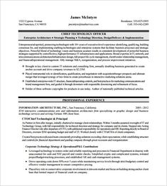 Sample Executive Management Resume Continuity Risk Managnment Resume Example  Risk Management Resume .