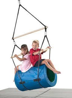 Therapy swing.