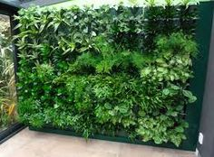 The vertical garden is currently very popular for various reasons . - The vertical garden Verticle Garden, Fenced Vegetable Garden, Vertical Garden Wall, Small Garden Images, Evergreen Vines, Modern Garden Design, Home Landscaping, Garden Furniture, Exterior