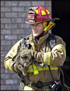 ((Firefighter rescuing a cat)) Many people don't notice an injured animal, but then there are humans like these that  go as far as risking their lives to save them. I'm glad you exist. My thanks.