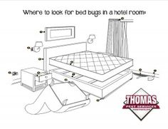 Where to look for bed bugs in a Hotel