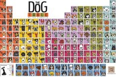 And if you love dogs then check out and order The Dog Table Poster for $15.00 and celebrate all dogs!  http://angrysquirrel.myshopify.com/collections/frontpage/products/the-dog-table-of-the-elemutts-poster