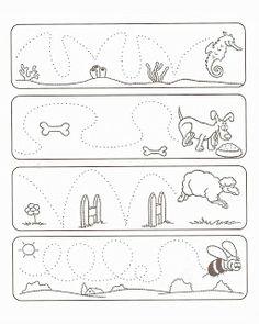 Tiere Spuren