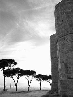 Castel del monte - Andria - ITALY 2015
