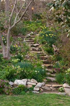 make it natural and winding hillside steps have been planted to wildflower garden