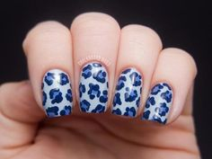 Denim Leopard