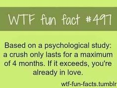 hahaha...for me,once a crush lasted more than a year...but now I don't even remember his face