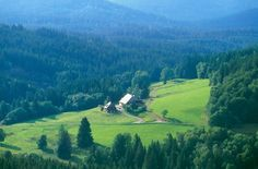 Black Forest - Photo Gallery