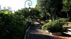 Princess Grace Park - Monte Carlo