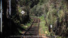 Linha do Douro  #Portugal #Douro #Natureza #Paisagem #Trains #Douro by luis_meireles_363