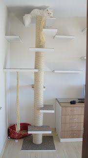 Wilson Marceneiros: Prateleiras e arranhador para gatos