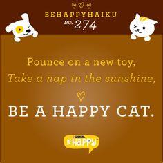 Kitty haiku.