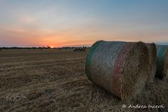Round bales at sunset - null