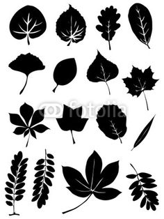 simple tree graphic - Google Search