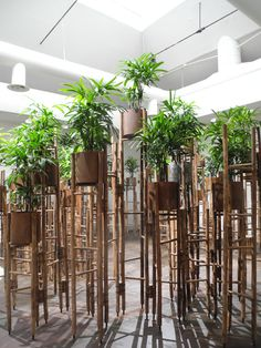 """Venice Architecture Biennale 2016   Vietnamese architect Vo Trong Nghia has revealed that he makes his staff meditate every day to help them """"resist cravings and improve concentration"""". Human Meditation Nature at the Venice Architecture Biennale by Vo Trong Nghia Architects"""