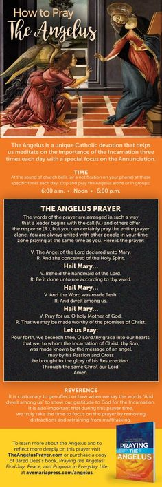 How to Pray the Angelus [Infographic] - Inspired by Praying the Angelus: Find Joy, Peace, and Purpose in Everyday Life by Jared Dees Catholic Religion, Catholic Saints, Roman Catholic, Catholic Theology, Teaching Religion, Catholic Quotes, Faith Prayer, My Prayer, Prayer Board