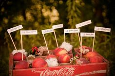 peach and cotton escort cards