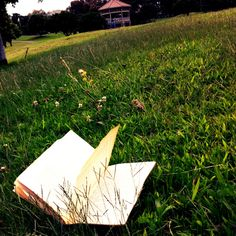 Abandoned book in the grass