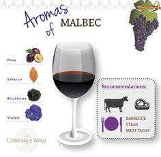 Aromas of Malbec