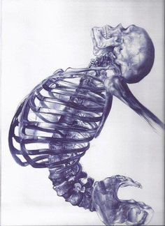 Human skeleton - ballpoint pen drawing by young artist Andrea Schillaci from Italy Memento Mori, Medical Illustration, Illustration Art, Art Illustrations, Illustration Inspiration, Ballpoint Pen Drawing, Human Skeleton, Skeleton Art, Skeleton Drawings