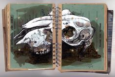 You can never have too many sheep skull drawings. www.duncancameron.org