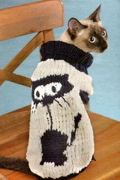30 Knitted Hats and Sweaters for Cats and Dogs, Modern Pet Design Ideas