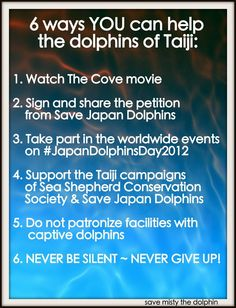 6 ways we can help the Dolphins of Taiji
