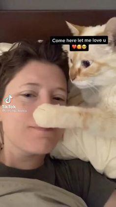Ven aquí humano, déjame amarte 🐈 Funny Cute Cats, Cute Baby Cats, Cute Little Animals, Cute Funny Animals, Kittens Cutest, Cats And Kittens, Cute Dogs, Cute Babies, Cute Animal Photos