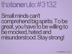 Small minds can't comprehend big spirits. To be great, you have to be willing to be mocked, hated and misunderstood. Stay strong!