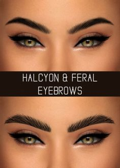 Simpliciaty - Halycon and feral eyebrows for The Sims 4