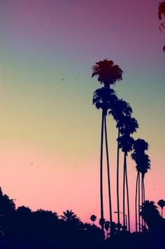 California skyline