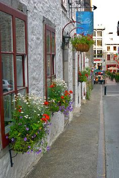Window boxes in Old Town, Montreal Old Montreal, Montreal Quebec, Voyage Canada, Laval, Window Boxes, Canada Travel, Beautiful Places, Amazing Places, Vacation Destinations