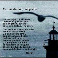 Tu...mi destino,mi puerto!...        Hazme viajar con el viento,que sea mi guía tu aliento,para llegar a tu cuerpo,que es mi destino ,mi puerto.     CERdL  (inédito)