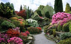 Rock Garden at Leonardslee Gardens, West Sussex, UK My Secret Garden, Plants, English Landscape Garden, Japanese Garden, Dream Garden, Azaleas Garden, Landscape Features, Rock Garden, Beautiful Gardens