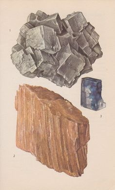 Vintage Print Rocks and Minerals Rock Salts by PineandMain