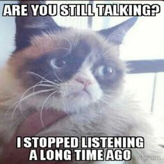 Grumpy cat quotes, grouchy quotes, grumpy cat jokes, grumpy cat humor, grumpy cat pictures …For more hilarious quotes and jokes funny visit www.bestfunnyjokes4u.com