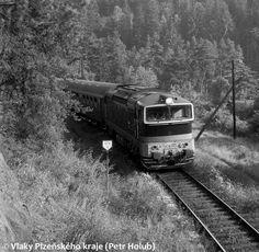 Europe Train, Trains