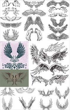 Wings Vector Clipart