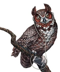 Great Horned Owl with Headphones by Jada Fitch [©2015-2016 jadafitch]