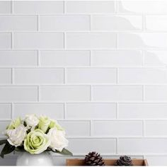 "Abolos Frosted Elegance 3"" x 12"" Glass Subway Tile & Reviews 