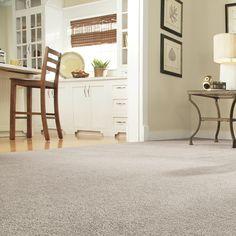 Carpet Buying Guide!