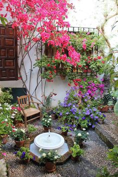 May in the Patios of Cordoba, Spain