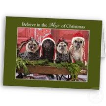 "Pugs ""Believe"" Christmas Cards by Pugs and Kisses"