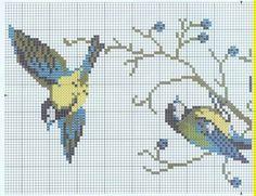 birds PART 1