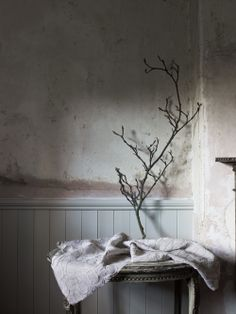 panelled room. old plastered walls, Tongue and groove panelling. Stella Nicolaisen -