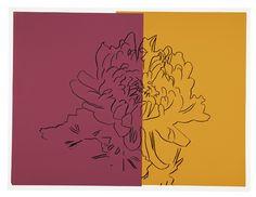 Andy Warhol, Kiku   Inspiration for a book cover