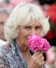Camilla Parker Bowles Photos - Camilla, Duchess of Cornwall smells a flower as she visits Sandringham Flower Show on July 27, 2016 in Sandringham, England. - The Prince of Wales & Duchess of Cornwall Visit the Sandringham Flower Show 2016
