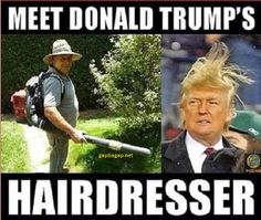 Funny Jokes About Donald Trump Hair vs. Hairdresser